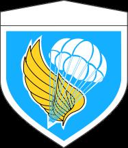 空挺団.png
